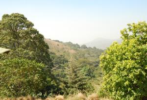 Taraba State to Join UN-REDD+ programme